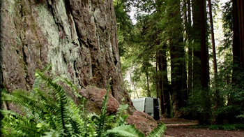 Discover the Forest TV Spot, 'Unplug' - Thumbnail 5
