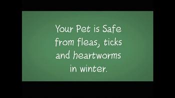 1-800-PetMeds TV Spot, 'Winter Meds' - Thumbnail 2