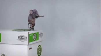 Office Max TV Spot, 'Unicycling Elephant'