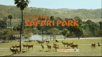 San Diego Zoo Safari Park TV Spot, 'Zebra and Cheetah' - Thumbnail 8