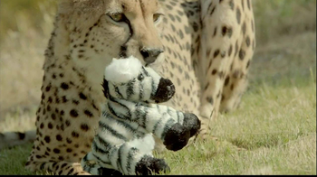 San Diego Zoo Safari Park TV Spot, 'Zebra and Cheetah'