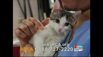 ASPCA TV Spot, 'Beautiful' Song by Joe Cocker - Thumbnail 6