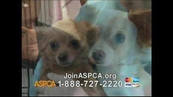 ASPCA TV Spot, 'Beautiful' Song by Joe Cocker - Thumbnail 3
