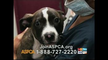 ASPCA TV Spot, 'Beautiful' Song by Joe Cocker - Thumbnail 5
