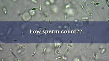 SpermCheck Fertility Test TV Spot, 'Next Steps to Parenthood' - Thumbnail 2