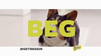 Beggin' Party Poppers TV Spot, 'I Get Beggin' - Thumbnail 4