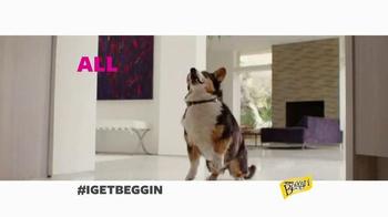 Beggin' Party Poppers TV Spot, 'I Get Beggin' - Thumbnail 5