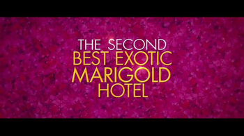 The Second Best Exotic Marigold Hotel - Thumbnail 7