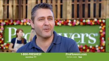 ProFlowers TV Spot, 'Valentine's Day' - Thumbnail 7