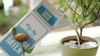 Silk Cashew Milk TV Spot, 'Where's Your Ficus?'