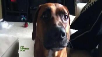 Pet Supplies Plus TV Spot, 'Rusty' - Thumbnail 2