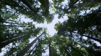 The American Institute of Architects TV Spot, 'Look Up' - Thumbnail 1
