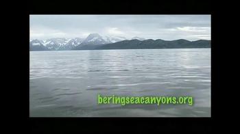 Greenpeace USA TV Spot, 'Bering Sea Canyons' - Thumbnail 10