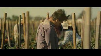 McFarland, USA - Alternate Trailer 19
