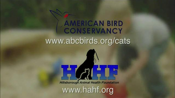 Hillsborough Animal Health Foundation TV Spot, 'Keep Cats Indoors' - Thumbnail 6