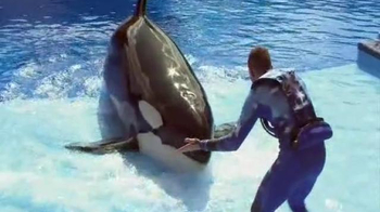 SeaWorld Cares TV Spot