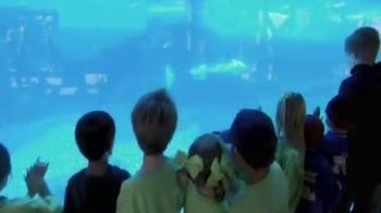 SeaWorld Cares TV Spot - Thumbnail 7