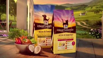 PetSmart Hill's Ideal Balance Slim & Healthy TV Spot, 'Save Up to $3' - Thumbnail 3
