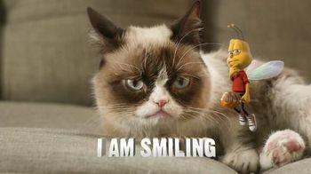 Honey Nut Cheerios TV Spot, 'Buzz Meets Grumpy Cat'  - 3906 commercial airings