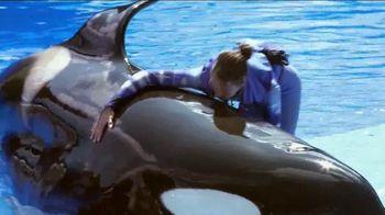 SeaWorld TV Spot, 'Killer Whales Change Lives' - 637 commercial airings