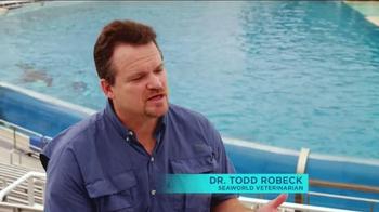 SeaWorld TV Spot, 'Killer Whales Change Lives' - Thumbnail 2