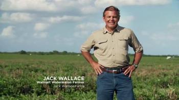 Walmart TV Spot, 'Fresh Watermelon Guaranteed' - 882 commercial airings