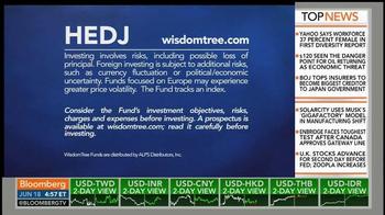 WisdomTree Europe Hedged Equity Fund (HEDJ) TV Spot - Thumbnail 6