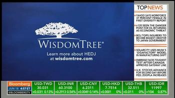 WisdomTree Europe Hedged Equity Fund (HEDJ) TV Spot - Thumbnail 5