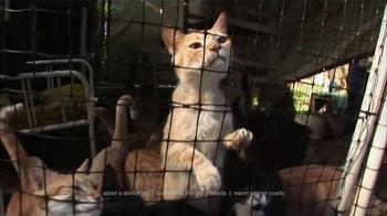 Humane Society TV Spot, 'That's Why I Donate' - Thumbnail 1