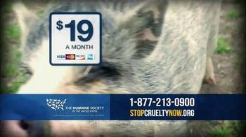 Humane Society TV Spot, 'That's Why I Donate' - Thumbnail 6