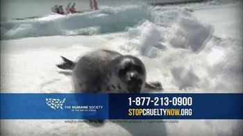 Humane Society TV Spot, 'That's Why I Donate' - Thumbnail 8