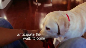 PetSmart TV Spot, 'The Walk to Come: Top Paw' - Thumbnail 3