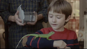 HP TV Spot, 'Lost Iguana' - Thumbnail 5