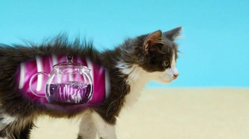 YouTube TV Spot, 'SciShow: Cats' - Thumbnail 4