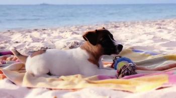 Petz: Countryside: Life on a Beach thumbnail
