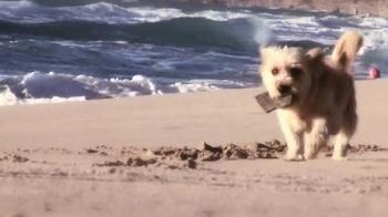 Petz: Countryside TV Spot, 'Life on a Beach' - Thumbnail 1