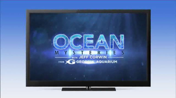 Hulu TV Spot, 'Ocean Mysteries' - Thumbnail 6