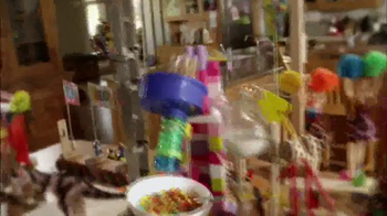 Fruity Pebbles TV Spot, 'Crazy Contraption' - Thumbnail 6