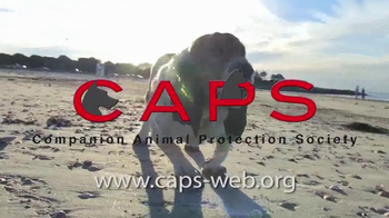Companion Animal Protection Society TV Spot, 'Second Chance at Life' - Thumbnail 10