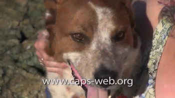 Companion Animal Protection Society TV Spot, 'Second Chance at Life' - Thumbnail 5