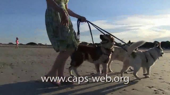 Companion Animal Protection Society TV Spot, 'Second Chance at Life' - Thumbnail 6