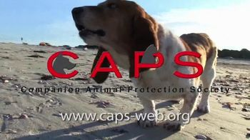 Companion Animal Protection Society TV Spot, 'Second Chance at Life'