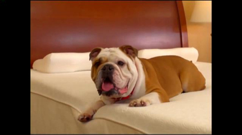 Mattress Discounters Veterans Day Sale TV Spot, 'Oh Boy! What's This?' - Thumbnail 5