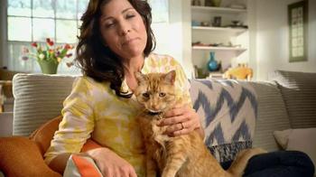 Blue Buffalo TV Spot, 'Cat Parents' - Thumbnail 10