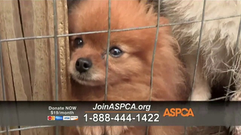 ASPCA TV Spot, \'Animal Rescue\'