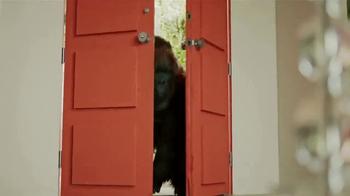 Clear Gorilla Glue TV Spot, 'Search' - Thumbnail 3