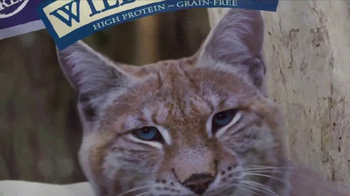Blue Buffalo BLUE Wilderness Cat Food TV Spot, 'Lynx Hunger' - Thumbnail 5