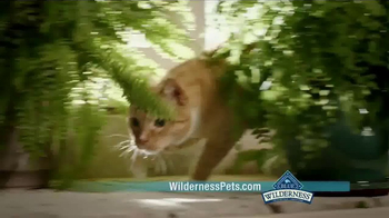 Blue Buffalo BLUE Wilderness Cat Food TV Spot, 'Lynx Hunger' - Thumbnail 6