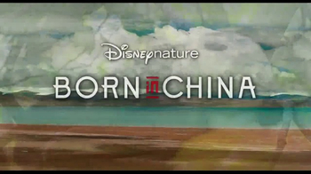 Born in China - Thumbnail 9