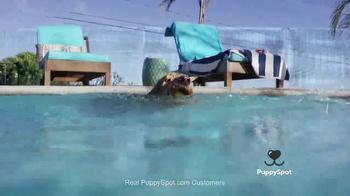 PuppySpot TV Spot, 'One Spot Families Trust to Find a New Puppy' - Thumbnail 3
